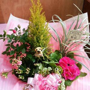 愛妻の日 かわいい花アレンジ(寄せ鉢) 8hana-gift