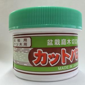 カットパスター Hi 160g 松柏用 サツキ用 切口塗布剤 緑蓋|8hana-gift