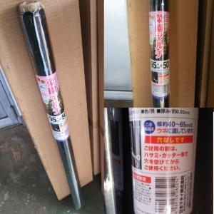 ニコニコ菜園マルチ 黒 95cm×50m 日本マタイ 穴なし 1本|8hana-gift