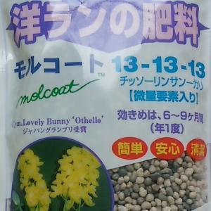 モルコート 300g 洋ランの肥料|8hana-gift
