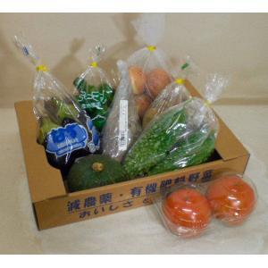 有機肥料を使った いまトレ野菜セット1980円 (生産直売/兵庫県産)|8hana-gift
