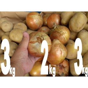新じゃがと新玉ネギのセット(じゃがいも3kgを2種類と玉ネギ2kgをセットにして) 計8kg (食用 兵庫県産)|8hana-gift
