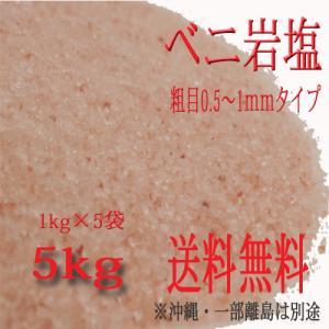 岩塩 ベニ岩塩 粗目0.5〜1mmタイプ 5kg 1kg×5袋