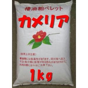 椿油粕特殊肥料 椿キングを小分け1kg つばき油かすカメリアで土作り|9-9store