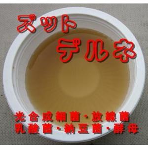 活力活性根の土作りバイオ液10kg ペプチド配合光合成細菌ズットデルネ 発根活着促進土壌改良剤 9-9store 02