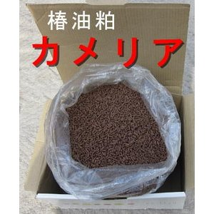 特殊肥料の椿キングを1kgに小分け 椿油かすカメリアで土作り 病害虫の駆除と忌避|9-9store|02