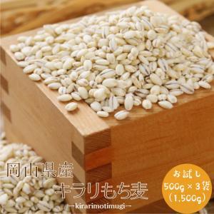 麦 令和元年産 もち麦 国産 岡山県産 訳あり キラリもち麦 1.5kg(500g×3袋)ポイント消化 送料無料 雑穀・雑穀米 古代米 食品 安い お試し 2kg以下 美容の画像