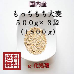 麦 令和元年産 大麦 国内産 もっちもち大麦 1.5kg(500g×3袋) 岡山県産 ポイント消化 ...