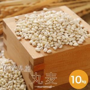 新麦 令和2年 大麦 佐賀県産 丸麦(大麦) 10kg (5kg×2袋) α化 ポイント7倍 送料無...