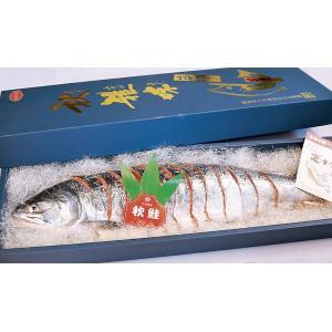 新巻鮭(姿切)1本約2.5kg6分割      |946gyokyou