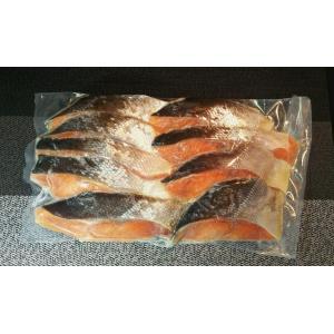 天然時鮭【わけあり切身】             1kg|946gyokyou