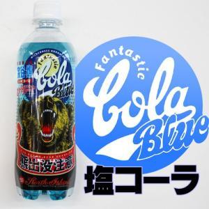塩コーラ 熊出没注意500ml×24本 北海道 ご当地 ドリンク|946kitchen