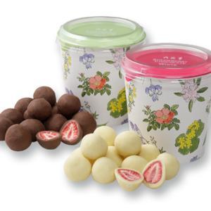 六花亭 ストロベリーチョコセット ホワイト&ミルクチョコ 北海道 お取り寄せ 人気商品 お菓子 贈り...