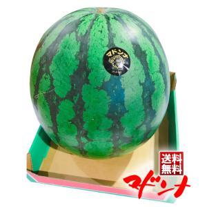 【商品名】北海道産 富良野 マドンナすいか<br> 【内容量】1玉6L<br&gt...