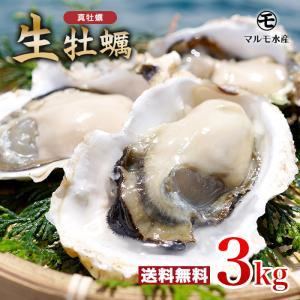 九十九島かき 殻付き牡蠣3kg(48個前後)<開け方・調理ガイド付き、牡蠣好きも大満足!>生食OK!...