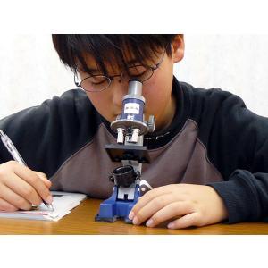 《セット&撮影》 顕微鏡 セット M-M600(100倍・200倍・300倍)|a-achi