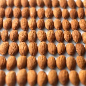 川越 ナッツ アーモンド ロースト ナッツ専門店 素焼き 無油 オーガニック スーパーフード ナチュラルフーズ 低糖質 ビタミン 500g|a-baron-store