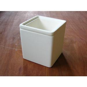 パセリ/植木鉢|a-depeche