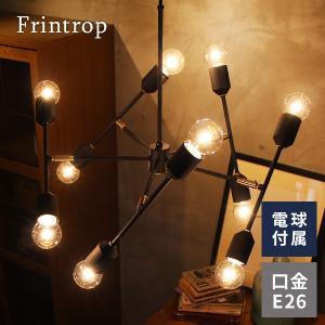 インターフォルム ペンダントライト フリントロップ 10灯 天井照明 可動型 ブラック E26 白熱球付属 interform Frintrop LT-3051 取り寄せ商品 a-depeche