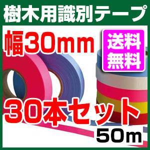 樹木用識別テープ 30mm 30本セット 森林等に 7色よりお選び下さい|a-e-shop925|02