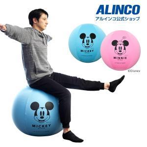 アルインコ カバー付エクササイズボール65cm ミッキー/ミニー DSY125  フィットネス 健康...