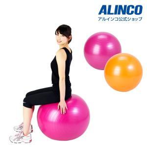 健康器具 バランスボール 55cm  エクササイズボール E...