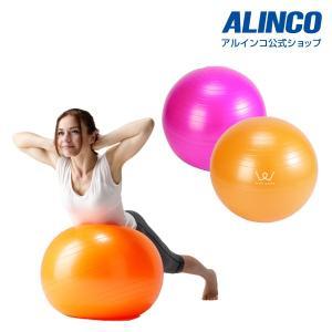 アルインコ WB124 エクササイズボール55cm フィットネス 健康器具