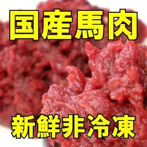 会津産馬肉ミンチ&ブツ切り 1kg (500g×2袋)
