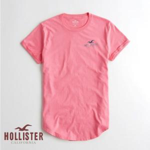 ホリスター HOLLISTER メンズ Tシャツ 半袖  ク...
