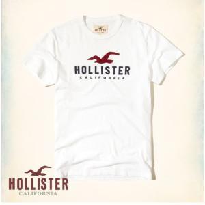 ホリスター HOLLISTER 新作 メンズ Tシャツ  半...