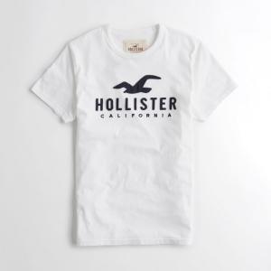 クーポン対象商品 ホリスター HOLLISTER メンズ T...