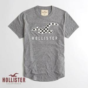 ホリスター HOLLISTER メンズ Tシャツ 半袖 ロゴ...