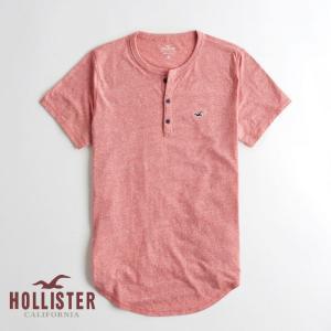 ホリスター HOLLISTER メンズ Tシャツ 半袖 マス...