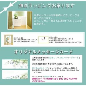 シチズン カンパノラ エコドライブ BU0020-54A CAL.8730 紺瑠璃(こんるり)腕時計 a-inoko 06