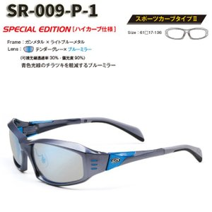 【STORMRIDER/ストームライダー】SR-009-P スポーツカーブタイプII デンターグレー×ブルーミラー SR-009-P-1 000335 ハイカーブ仕様 偏光レンズ ミラーレンズ|a-k-k