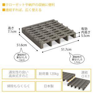 タイヤラック タイヤ収納 物置 タイヤ収納庫 2個 日本製 [ タイヤラック ラック スタッドレスタイヤ ノーマルタイヤ 収納 ガレージ プラスチック|a-life|05