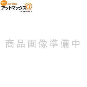 【エーモン】 静音計画 【2647】 風切り音低減モールバイザー用{2647[9980]} a-max