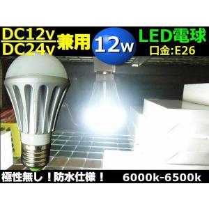 DC12V・24V兼用/12W・白色LED電球/口金:E26/航海灯照明ライト