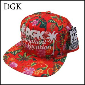 DGK スナップバックキャップ ディージーケー PERMANENT VACATION SNAPBACK CAP|a2b-web