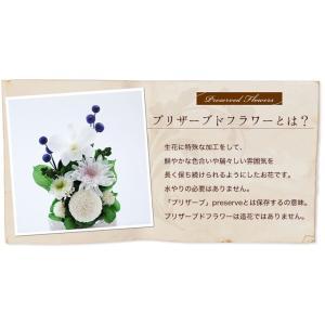 プリザーブドフラワー 仏花 仏壇 お供え花マム...の詳細画像2