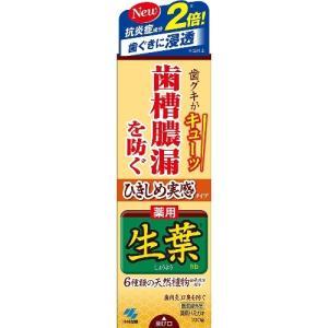 小林製薬 ひきしめ生葉(しょうよう) 薬用ハミガキ 100g|aaa83900