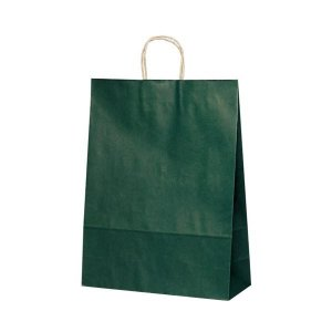 T-12 自動紐手提袋 紙袋 紙丸紐タイプ 380×145×500mm 200枚 カラー(緑) 1448※代引・同梱不可