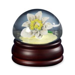 842970053026 Edelweiss Mushroom Flower  Water Globe abareusagi-usa