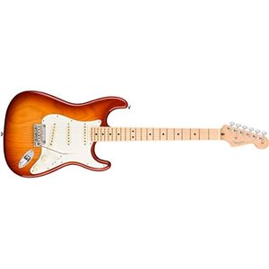 Fender(フェンダー) American Professional Stratocaster Sienna Sunburst /M【USA ストラトキャスター 】の商品画像|ナビ