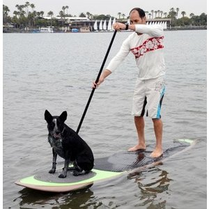 PUPDECK-SOLID Better Surf...than Sorry Paddle with Your Dog Pup Deck SUP Traction Pad for Dogs Stand Up Paddleboard Deck Padding.|abareusagi-usa