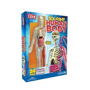 知育玩具 人体模型 スマートラボトイズ スクイシーヒューマンボディ 全長30cm abareusagi-usa