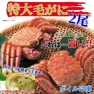 北海道と言えば毛ガニ!毛がに(特大2尾・約1kg・ボイル冷凍...