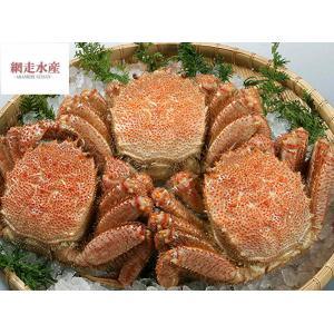 毛がに(ボイル) 3尾で1.2kg 贈答用 プレゼント かにみそ 贈り物 蟹
