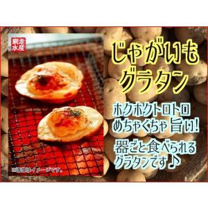 じゃがいもグラタン 6個入 ご飯のおかず ホワイトソース チーズ 北海道お取り寄せ 器ごと食べられる ホクホク オードブル|abashiri
