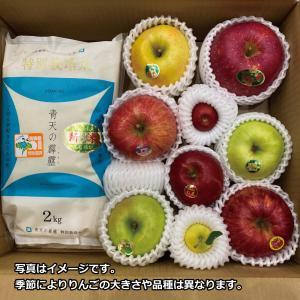 青天の霹靂:新米2kgと季節のりんご詰め合わせセット abc-afactory
